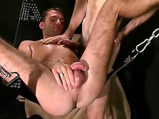 Nasty Studs Ass Penetration